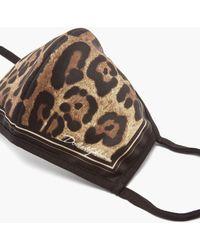 Dolce & Gabbana レオパード ジャージーマスク - マルチカラー