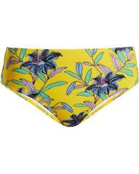 Diane von Furstenberg - Cheeky Mid Rise Floral Print Bikini Briefs - Lyst