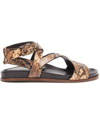 Emme Parsons Bodhi Python-print Leather Crossover Sandals - Brown