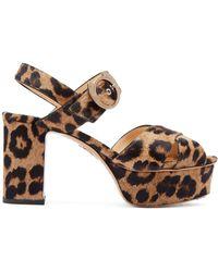 Charlotte Olympia Leopard-print Calf-hair Platform Sandals - Multicolor