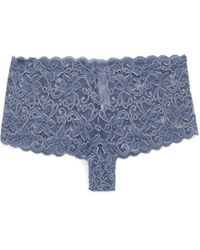 Hanro Moments Floral-lace Briefs - Blue