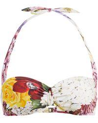 Dolce & Gabbana Ortensie Floral-print Balconette Bikini Top - Multicolour