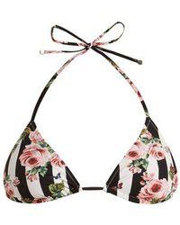 Dolce & Gabbana - Rose-print Triangle Bikini - Lyst