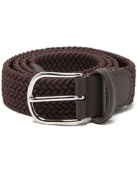 Rip Curl Classy Web Belt One Size Brown