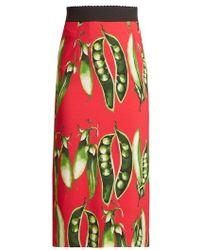 Dolce & Gabbana - Broad Bean-print Midi Skirt - Lyst