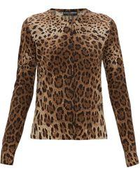 Dolce & Gabbana Leopard-print Virgin-wool Cardigan - Brown
