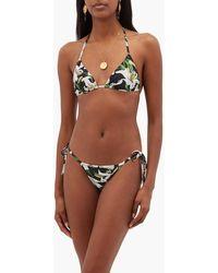 Dolce & Gabbana Lily-print Tie-side Bikini Briefs - Black