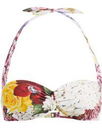 Dolce & Gabbana - Ortensie Floral Print Balconette Bikini Top - Lyst