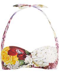 Dolce & Gabbana Haut de bikini à imprimé floral Ortensie - Multicolore