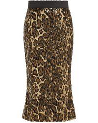 Dolce & Gabbana Leopard Print Sequinned High Rise Pencil Skirt - Multicolor