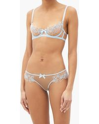 Agent Provocateur Lindie Floral-embroidered Tulle Briefs - Blue