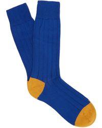 Pantherella - Scott Nichol Oxford Ribbed Knit Socks - Lyst