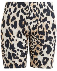 Paco Rabanne Leopard Print Stretch Jersey Cycling Shorts - Multicolor