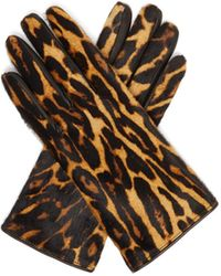 Burberry Leopard-print And Check Calf-hair Gloves - Brown