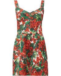 Dolce & Gabbana Geranium-print Cotton-blend Brocade Playsuit - Multicolour