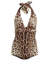 Dolce & Gabbana レオパードプリント ホルターネック スイムウェア - マルチカラー