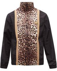 Dolce & Gabbana レオパード ジップアップ シェルトラックジャケット - マルチカラー
