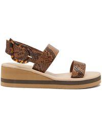 Ancient Greek Sandals クリオ レインボー パイソンパターンレザー ウェッジサンダル - ブラウン