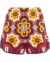 La DoubleJ Ciccio-print Cotton-blend Terry Shorts - Multicolour