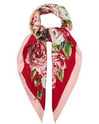 Dolce & Gabbana - Rose-print Silk Scarf - Lyst