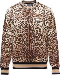 Dolce & Gabbana レオパード コットンスウェットシャツ - マルチカラー