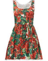 Dolce & Gabbana Geranium-print Cotton Mini Dress - Multicolour