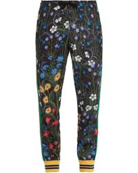 Gucci - New Flora-print Web-trimmed Jersey Track Trousers - Lyst
