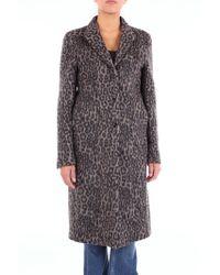 RTA Leopard Print Coat - Black