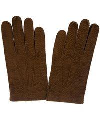 Merola Gloves Leather Gloves - Brown