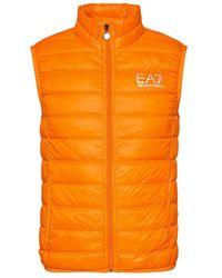 EA7 Piumino - Oranje