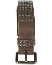 HTC Belt - Bruin