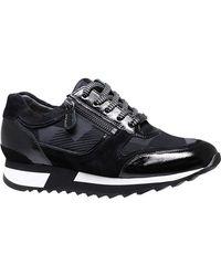 HASSIA Sneaker Barcelona 0-302021-0100 - Nero