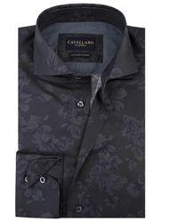 Cavallaro Primo shirt - Gris