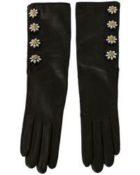 Dolce & Gabbana Gants - Noir