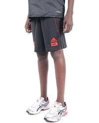 adidas - Arsenal x 424 shorts - Lyst