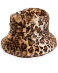 P.A.R.O.S.H. Hat - Bruin