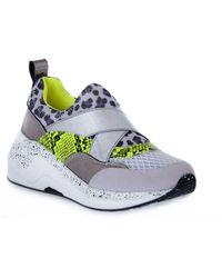 CafeNoir Slip ON Sneakers Animalier - Grau
