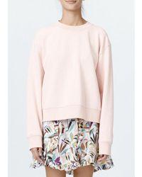 Munthe Powell Sweatshirt - Rose