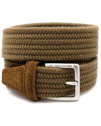 Anderson's Cinturon - Groen