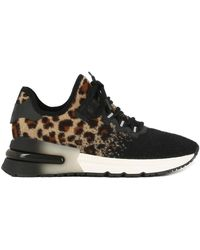 Dolce & Gabbana Sneakers - Nero