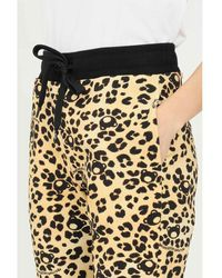 Moschino Trouser Spotted Negro