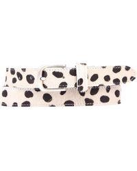 Legend Dalmatier Belt - Wit