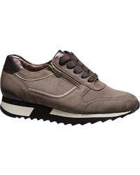 HASSIA Sneaker Barcelona 0-302022 1999 - Grigio