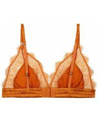 Love Stories Lace bralette Clementin Naranja