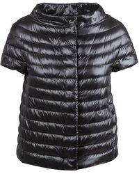 Herno Jacket - Noir