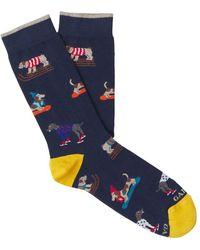 Gallo Puppy Cotton Socks - Blauw