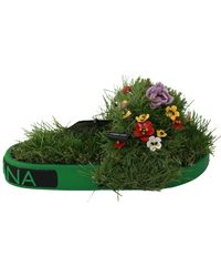 Dolce & Gabbana Gras Bloemen Sandalen - Groen