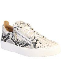 Giuseppe Zanotti Animalier print sneakers Gris