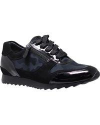 HASSIA Sneaker Barcelona 0-301911 0100 - Nero