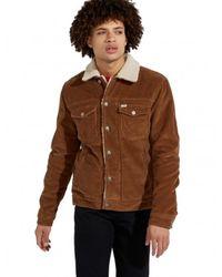 Wrangler Jacket W423upxma - Bruin